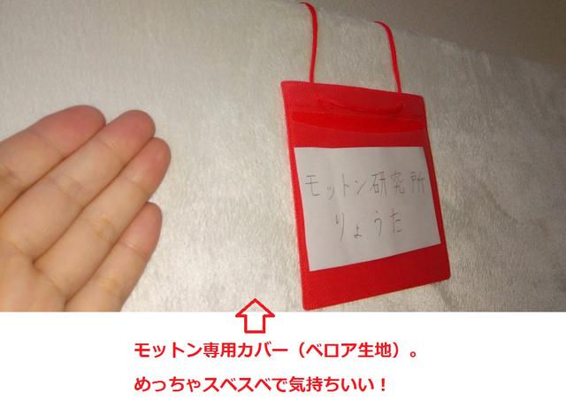 専用カバー(ベロア生地).png